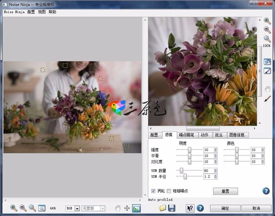 PS 64Bit 图片降噪插件Noise Ninja Pro v2 4 中文版| 三原色CG