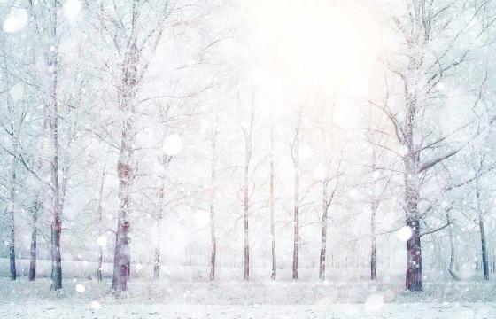 46个高清 雪花 大雪飘落 雪片转场 视频素材 Mov