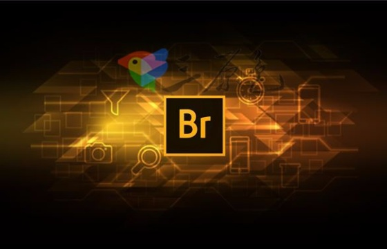 文件管理Adobe Bridge CC 2018 v8.1 For Win 中文版一键安装