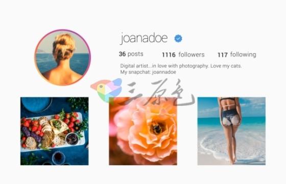 AE模板 iphone x手机移动端广告促销 Instagram Promo