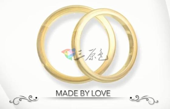 AE模板 液体黄金结婚戒指Logo展示片头 Liquid Rings Logo