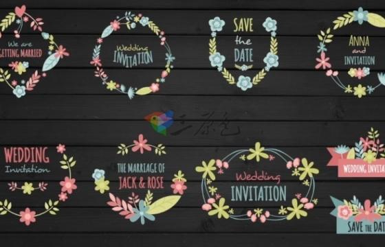 AE模板 10个花卉框架情人节浪漫婚礼文字标题动画 Wedding Day
