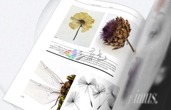 AE模板 书本杂志促销广告 翻页展示 Book and Magazine Promo
