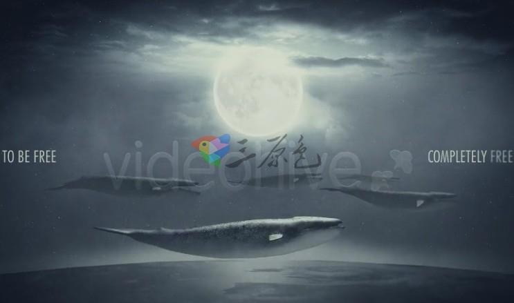 A模板 灰色创意超现实概念艺术 Videohive Surreal Freedom Ae 模板-第1张