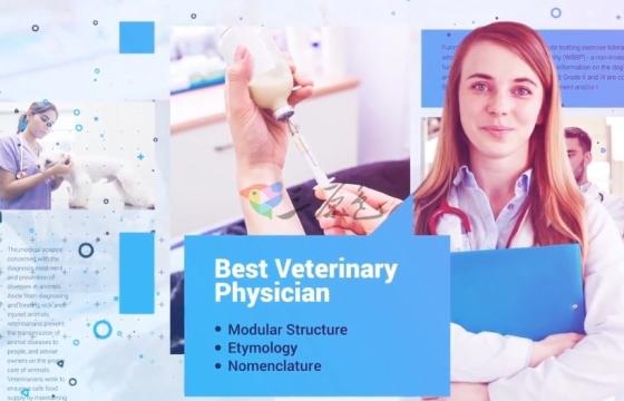 AE模板 宠物医院兽医医生风采展示幻灯片 Veterinarian Promo