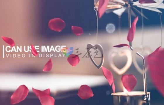 AE模板 浪漫婚礼相册 玫瑰花瓣转场过渡 Wedding Intro
