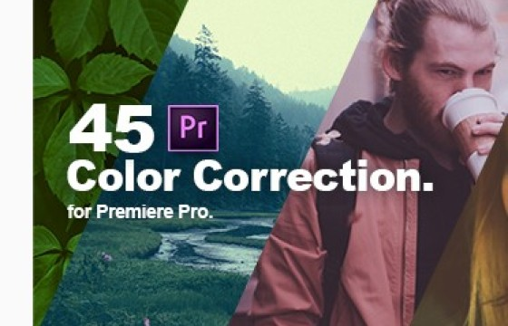 Pr调色预设 颜色校正和色彩分级预设 Color Grading Presets 中文版