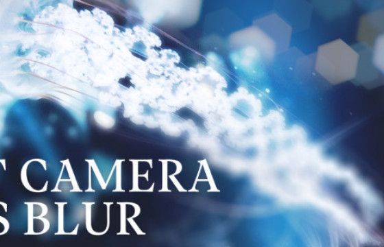 AE Pr插件 相机镜头模糊插件 Fast Camera Lens Blur v4.1 中文一键安装