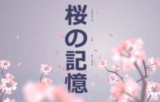 AE模板 日本国花樱花瓣唯美文本动画展示 Japan Style Intro