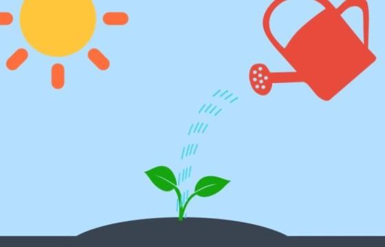 AE模板 个人公司业务卡通动画介绍展示 Promote Your Business
