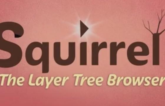 AE扩展脚本 图层层级管理编辑器脚本 Aescript Squirrel v1.5