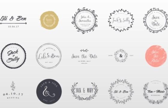 AE模板 15个婚礼婚庆 新娘新郎人名字幕条动画 Wedding Titles