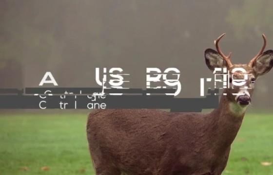 AE模板 干扰故障损坏效果文字标题字幕条动画+配套音效
