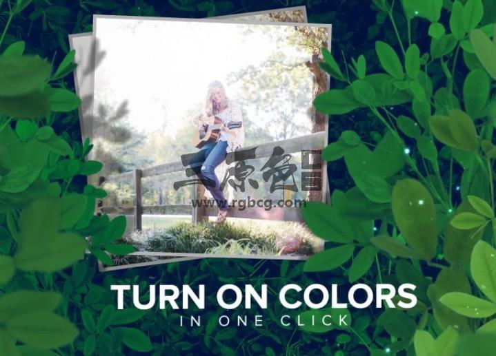 AE模板 绿色植物丛照片相册幻灯片展示 New Beginnings Ae 模板-第1张