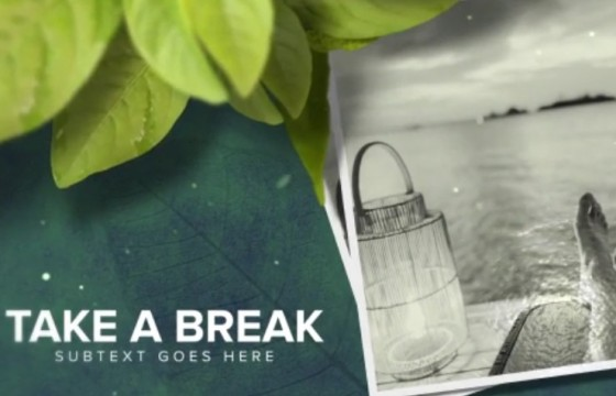 AE模板-绿叶主题照片相册幻灯片展示 Wellness Health Promo