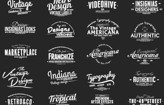 AE Pr模板  Mogrt图形 婚礼字幕条文字标题 Vintage Typography