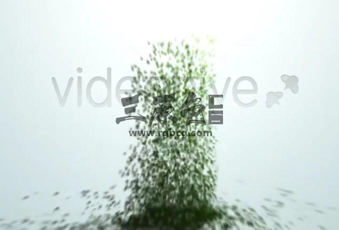 AE模板 粒子飞起汇聚LOGO标志动画片头 Creation Ae 模板-第1张