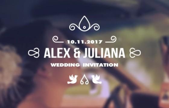 AE模板 浪漫婚纱婚礼标题字幕条动画 Wedding Titles