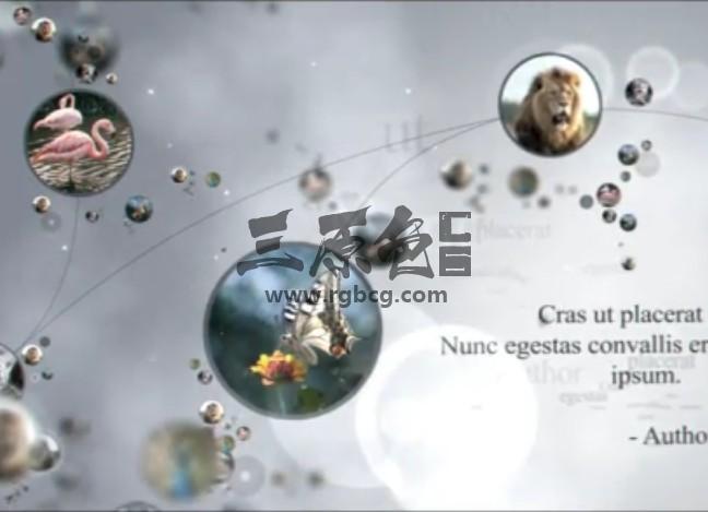 AE模板 人物关系动态链接显示说明 VideoHive Connections Ae 模板-第1张