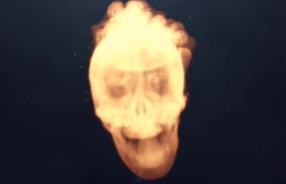 AE模板 骷髅头LOGO显示动画片头 Skull Logo Reveal