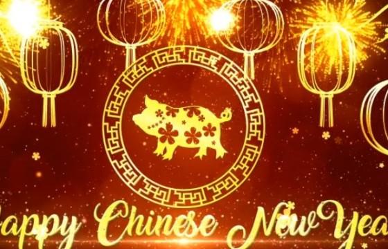 AE模板 2019中国新年春节祝福片头 Chinese New Year Wishes