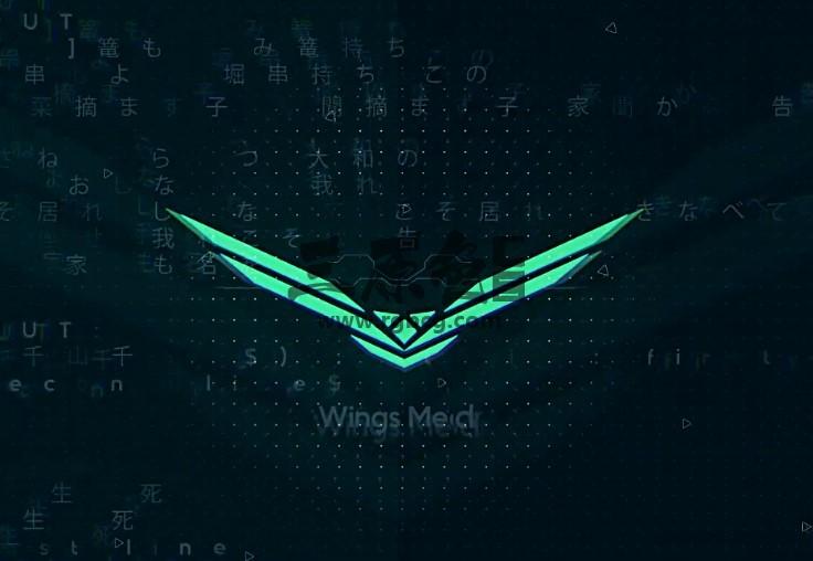AE模板 科技感中文汉字闪现LOGO显示片头 Technology Cyber Logo Ae 模板-第1张