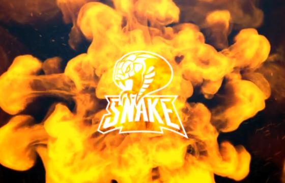 AE模板 魔术火焰蛇LOGO动画标志 Magic Snake Logo Intro