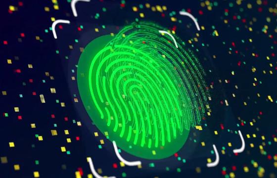 AE模板 指纹识别显示LOGO片头 Fingerprint Logo