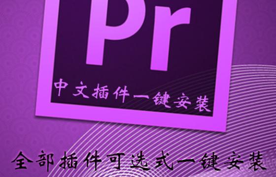 Pr 2021 最新中文插件脚本预设合集 一键安装 转场降噪特效调色大全