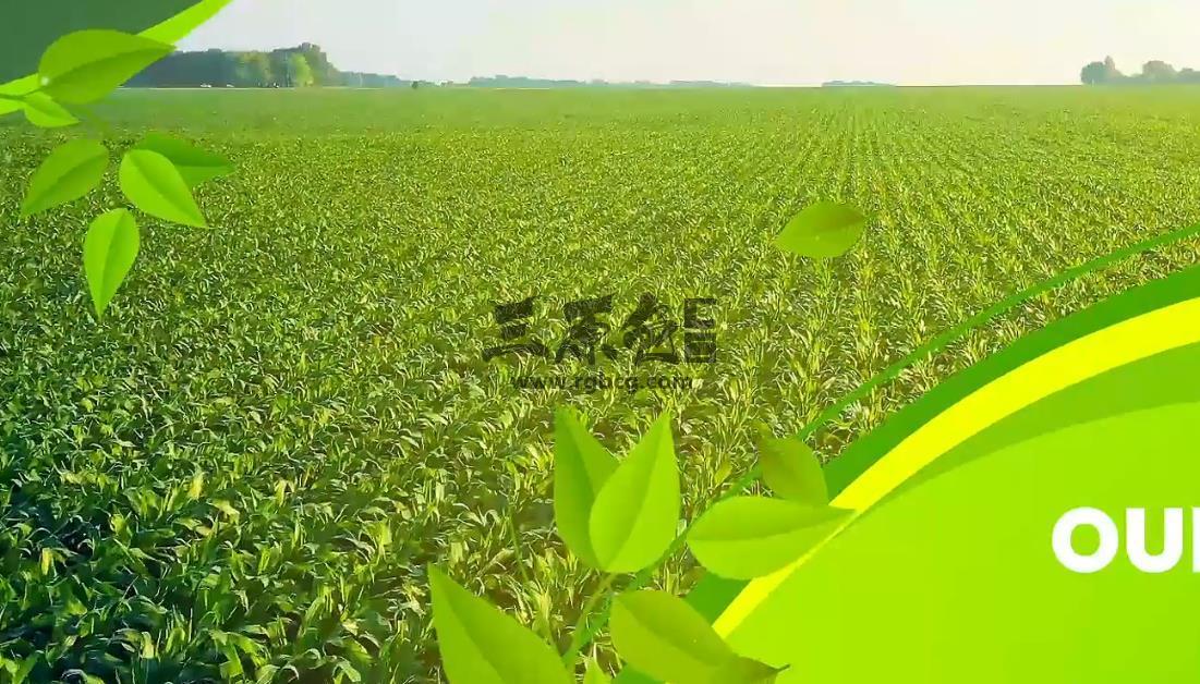 AE模板 绿色农业牧业展示宣传片 Agriculture Farming Slideshow Ae 模板-第1张