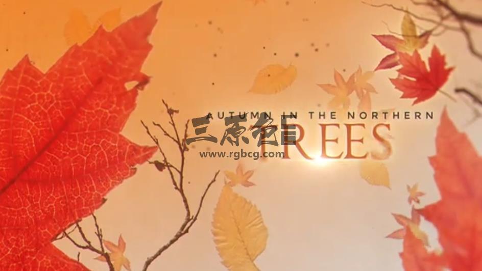 AE模板 - 秋季枫叶动画文字标题排版 Autumn Titles Ae 模板-第1张